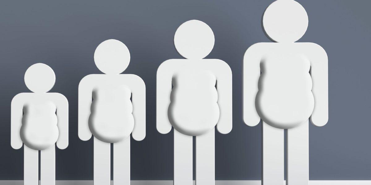 Vererbtes Übergewicht oder wie Epigenetik uns dick macht