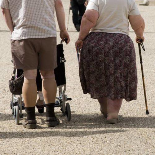 Ganzkörper-EMS und Sarcopenic Obesity – mögliche Mechanismen der Körperfettreduktion