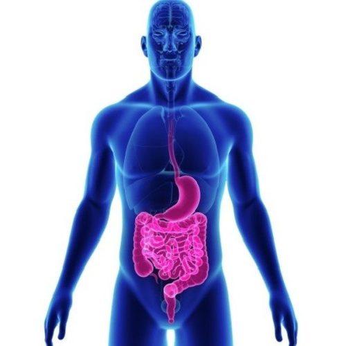 Gastrointestinale Funktionsstörungen durch exzessive Anstrengung?