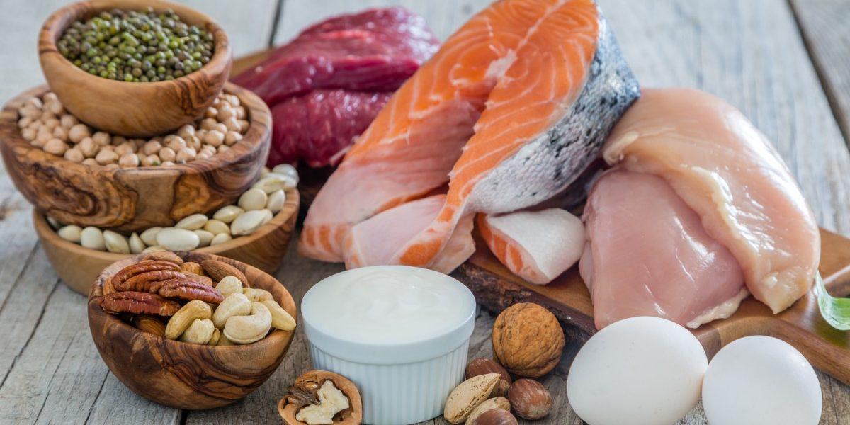 Einfluss von Proteinen auf die muskuläre Regeneration nach sportlicher Aktivität