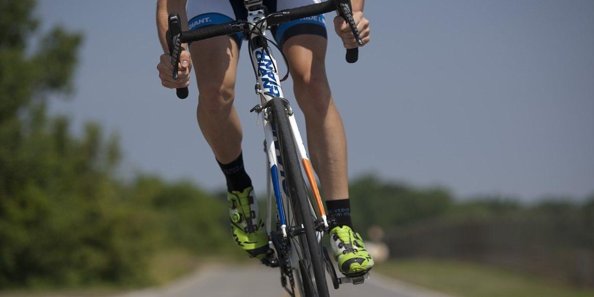 Expressionsveränderungen metaboler und myogener Faktoren während zwei Wettkampfsaisons in Junioren-Radrennfahrern