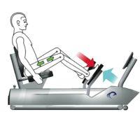 Wird exzentrische Muskelarbeit adäquat perzeptiert? Eine Analyse anhand der BORG-Skala