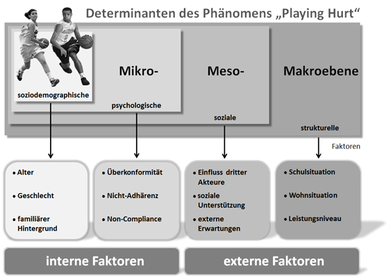"Determinanten des Phänomens ""Playing Hurt"""