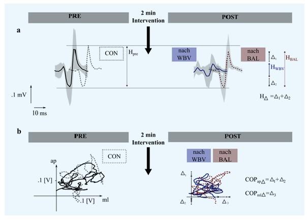 Chart Neuromuskuläre Modulation