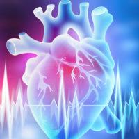 Gute Fitness senkt kardiovaskuläres Risiko deutlich