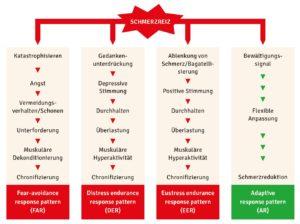 Das »Avoidance-Endurance-Modell« nach Hasenbring et al.