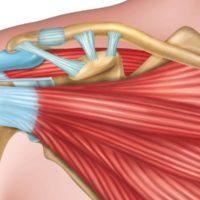 Nach Rotatorenmanschetten-Operation: Bringt eine Armschlinge Vorteile?