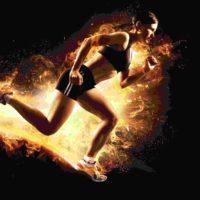 Darmbakterium verbessert Leistungsfähigkeit