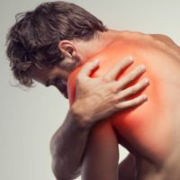 Die Rolle des Immunsystems bei Muskelverletzungen