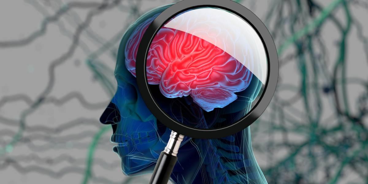 Sport-Neuro-Immunologie – von der Grundlagenforschung in die Praxis