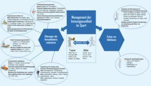 Management der Immungesundheit im Sport