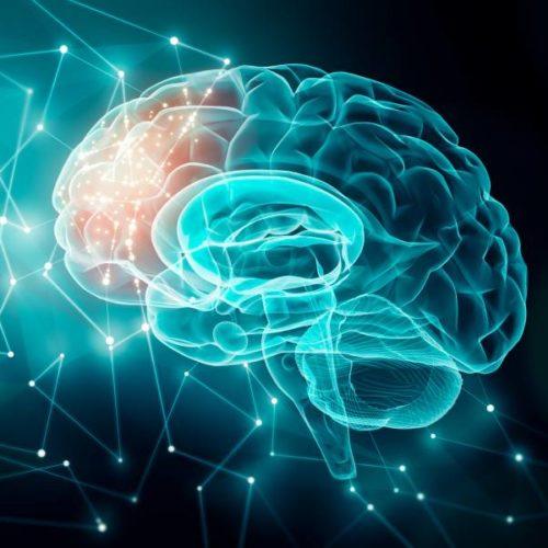 Körperliche Aktivität und Sport in der Prävention und Therapie neurodegenerativer Erkrankungen