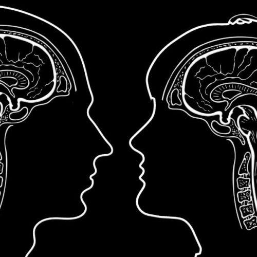 Sport und Kognition: Frauen brauchen anderes Training als Männer