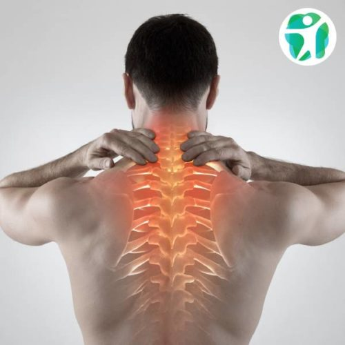 Medicine in Spine Exercise (MiSpEx)