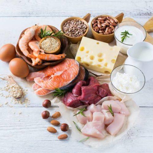 Proteinzufuhr im Sport