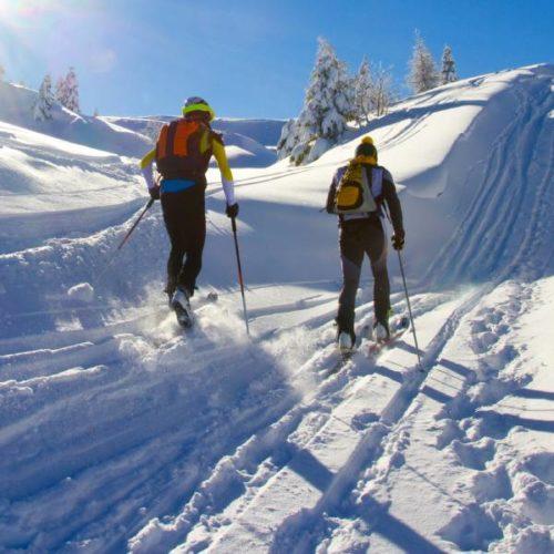 Gefäßsteifigkeit: Langlaufen, Alpinskifahren und Ergometer-Radfahren im Vergleich