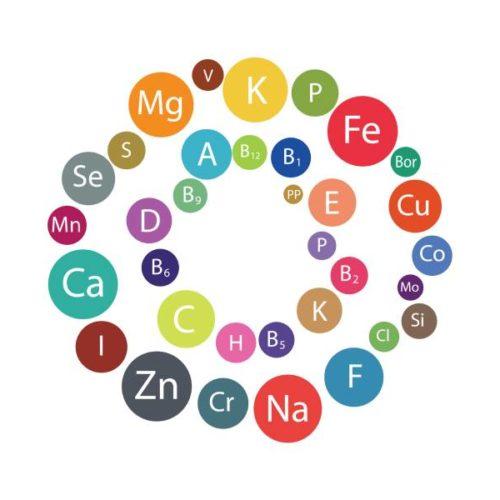 Minerale und Vitamine in der Sporternährung