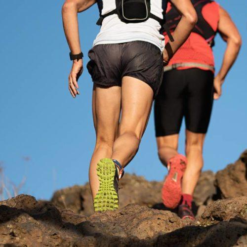 Blutlaktatkinetik während eines Laufbandstufentests vs. längeren Geländeläufen bei Skilangläufern