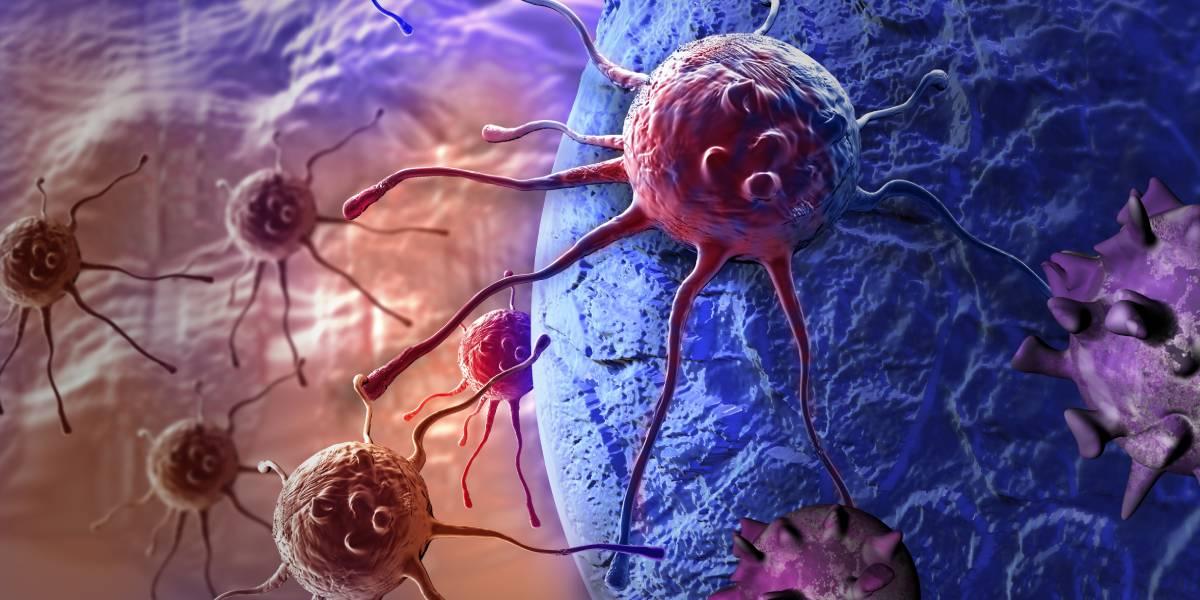 Schwer Krebskranke profitieren von EMS-Training – dank Myokinen