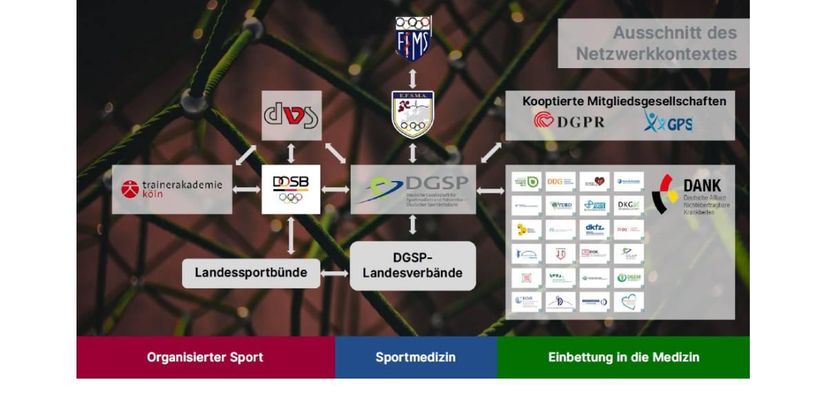 Sportmedizin als interdisziplinäres Fach: die Rolle der DGSP im organisierten Sport und in der Medizin