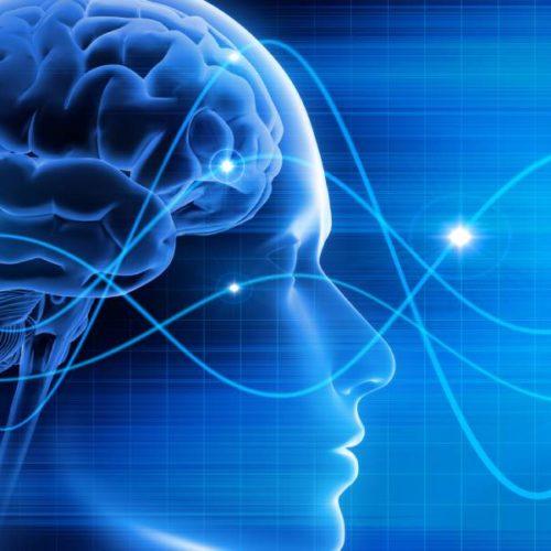 Biomarker erleichtert die Diagnose bei Verdacht auf Gehirnerschütterung